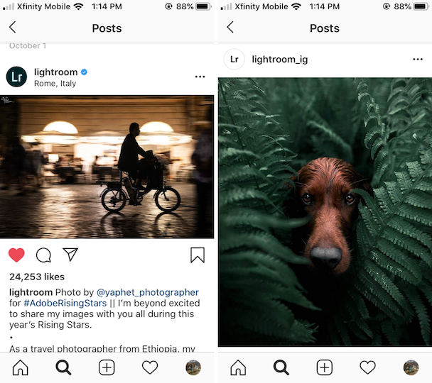 Adobe Lightroom, a pro-level editor for Instagram