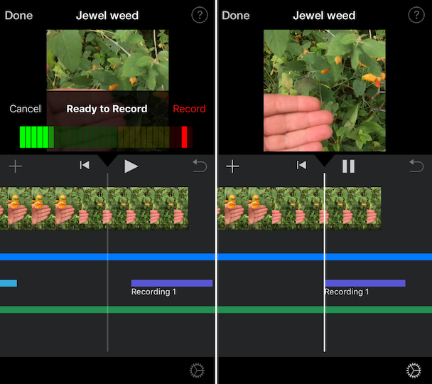 Screenshots: How to add a voiceover to iMovie