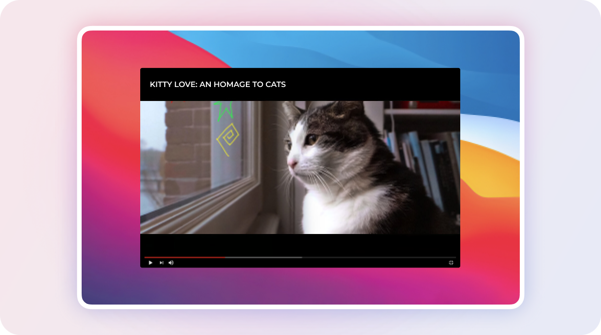 What to Watch on Netflix - Kitty Love