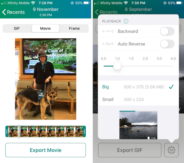 Screenshots: How to turn a Live photo into a video using Lively