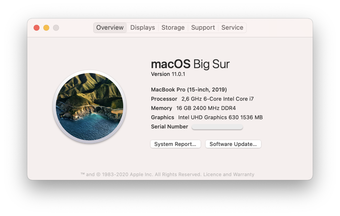 Latest macos version Big Sur