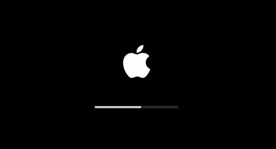 macOS Big Sur installation - black screen