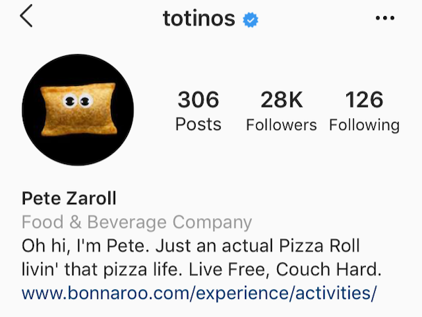 Instagram bio ideas: A cute Insta bio by @totinos