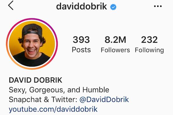 IG bio examples: A funny Instagram bio by @daviddobrik