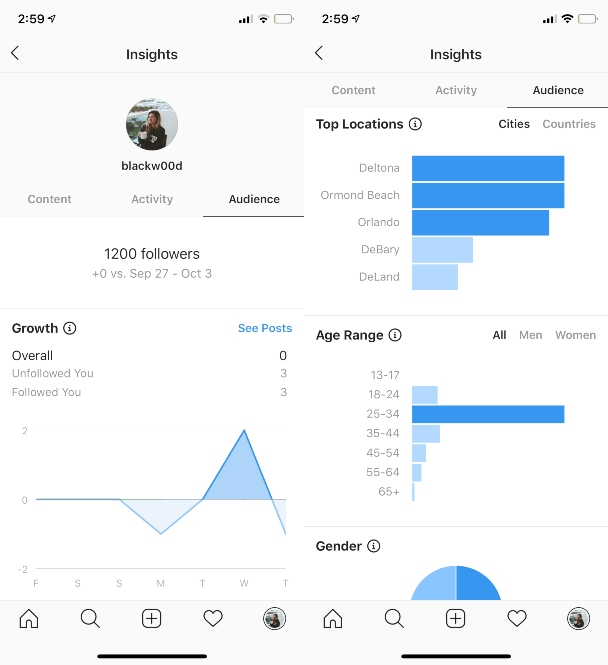 Audience Insights on Instagram and what they mean